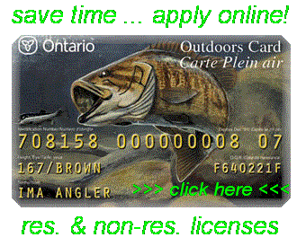 Lake erie walleye fishing charters lake erie perch for Cost of fishing license